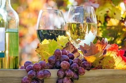 Titelbild zur Veranstaltung : Weinverkostung am Fiehrerhof